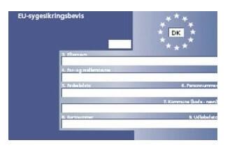 Husk det blå sygesikringskort, når du skal på bilferie i Europa